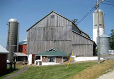 Mennonite Farm Tours