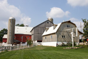 St Jacobs Horse Drawn Tours Mennonite Farm Tours